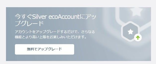 ecoPayz Silver Account