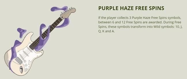 紫のフリースピン